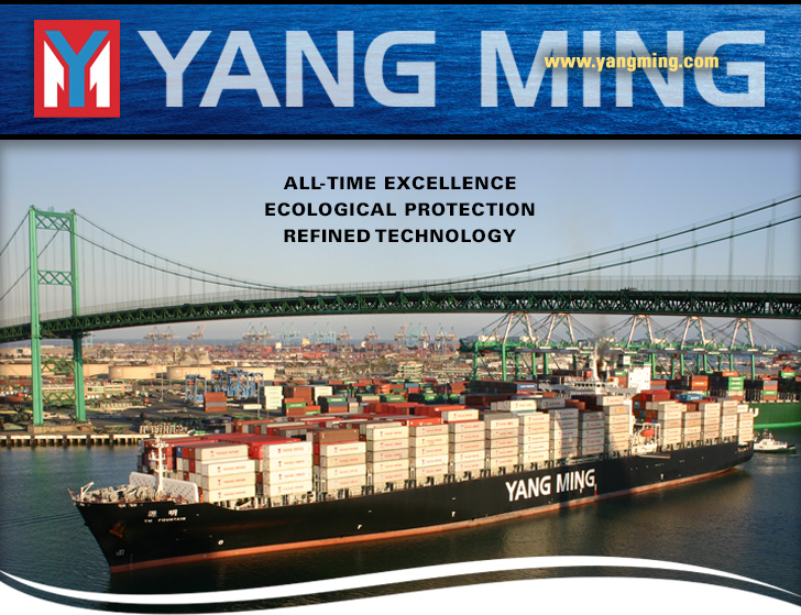 yang ming head graphic